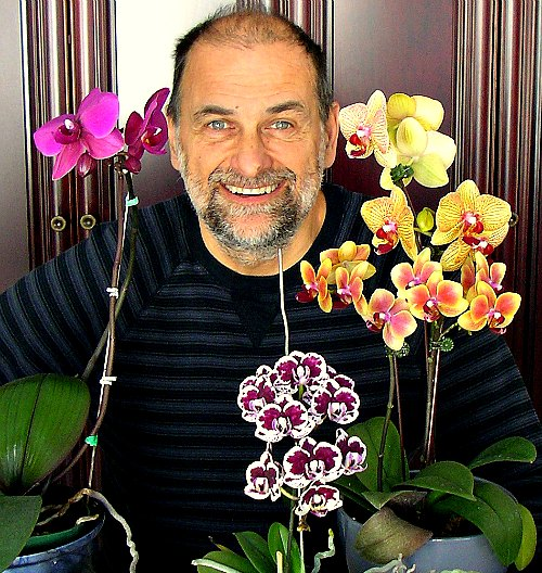 Learn To Grow Orchids The Easy Way Garden Fundamentals