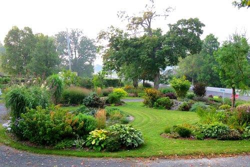 Growing Under Walnut Trees Garden Fundamentals