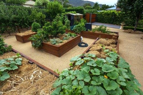 Best Building Material For Raised Garden Beds Garden Fundamentals